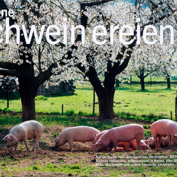 Merian Magazin Hessen, Reportage Kulinarik